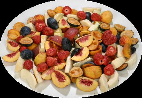 Лиофилизирани плодове